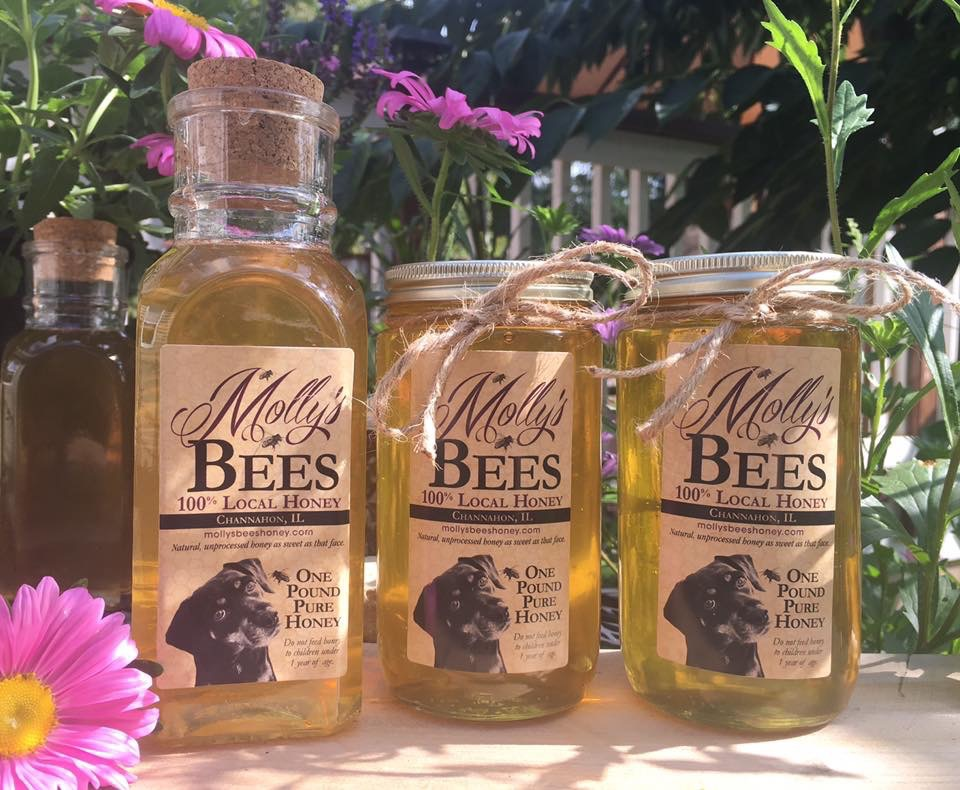 Molly's Bees Honey